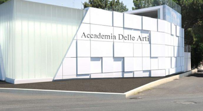 Arts Academy Professional – Audizioni